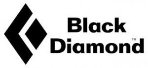 BD-Logo-1